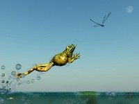 _Frog_